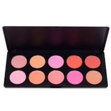 Picture of Costal Professional Blush Palette 10 pieces