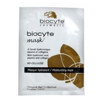 Picture of Biocyte Mask