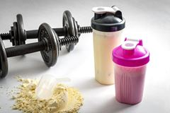 Picture for category Protein Shake